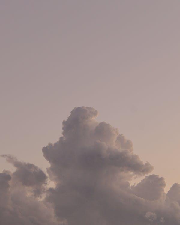 Foto profissional grátis de ângulo baixo, ao ar livre, ar