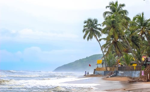 Free stock photo of beach, goa, india