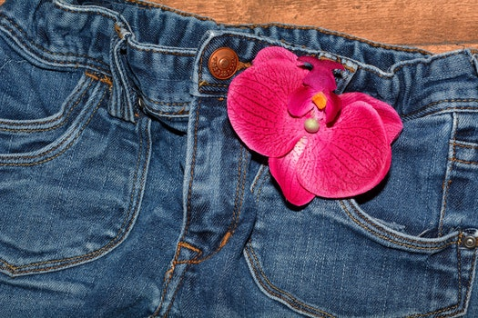 Pink Flower on Blue Jeans