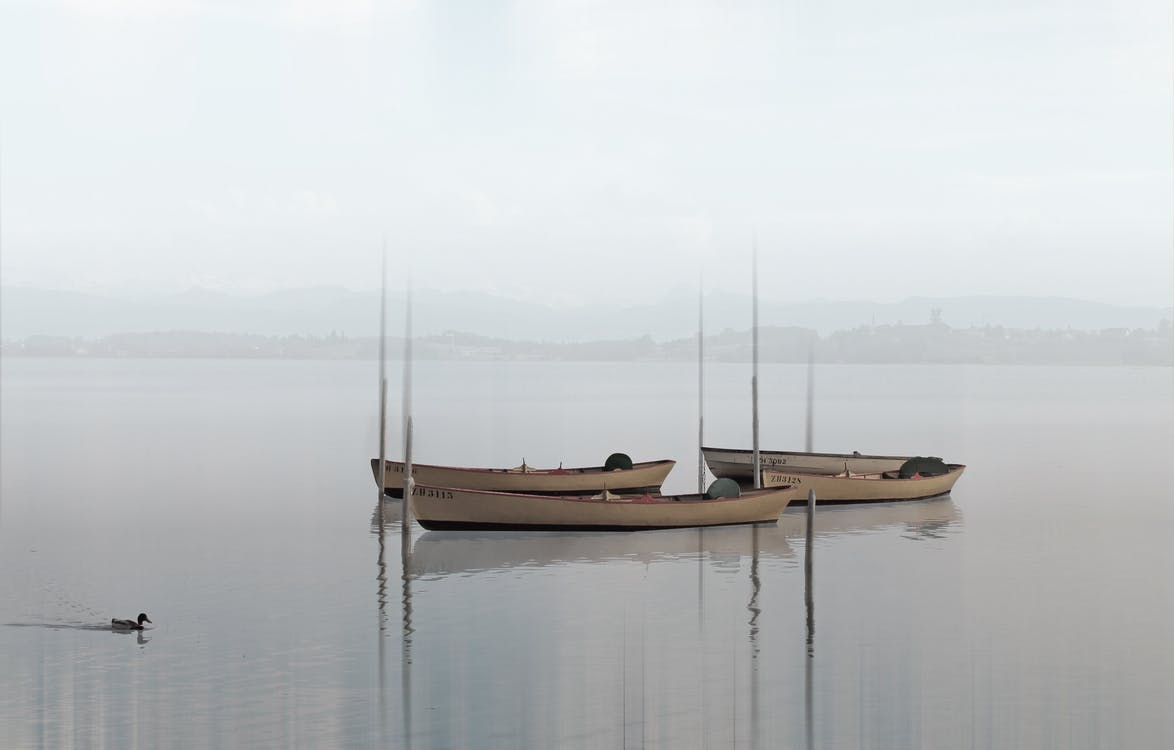 4 White Canoe on Calm Body of Water