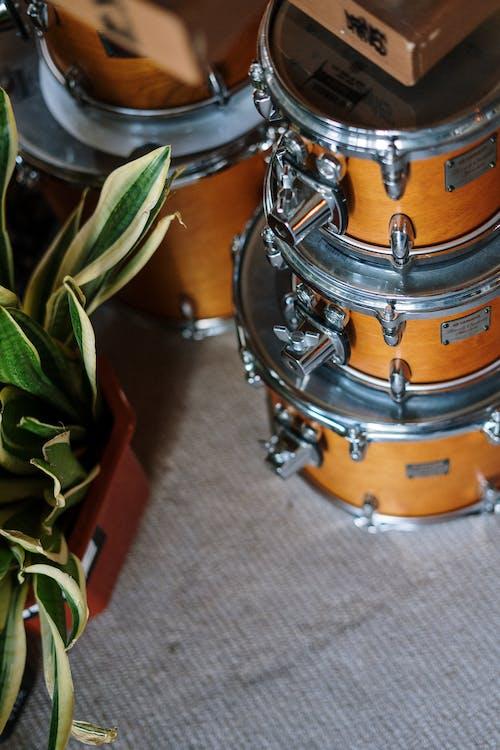 Green Leaves on Brown Drum
