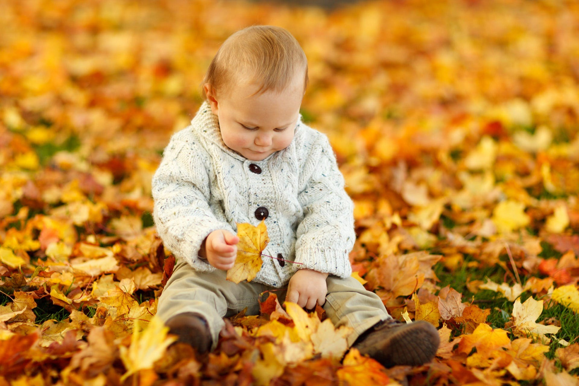 Display Autumn Fall Baby Boy Child