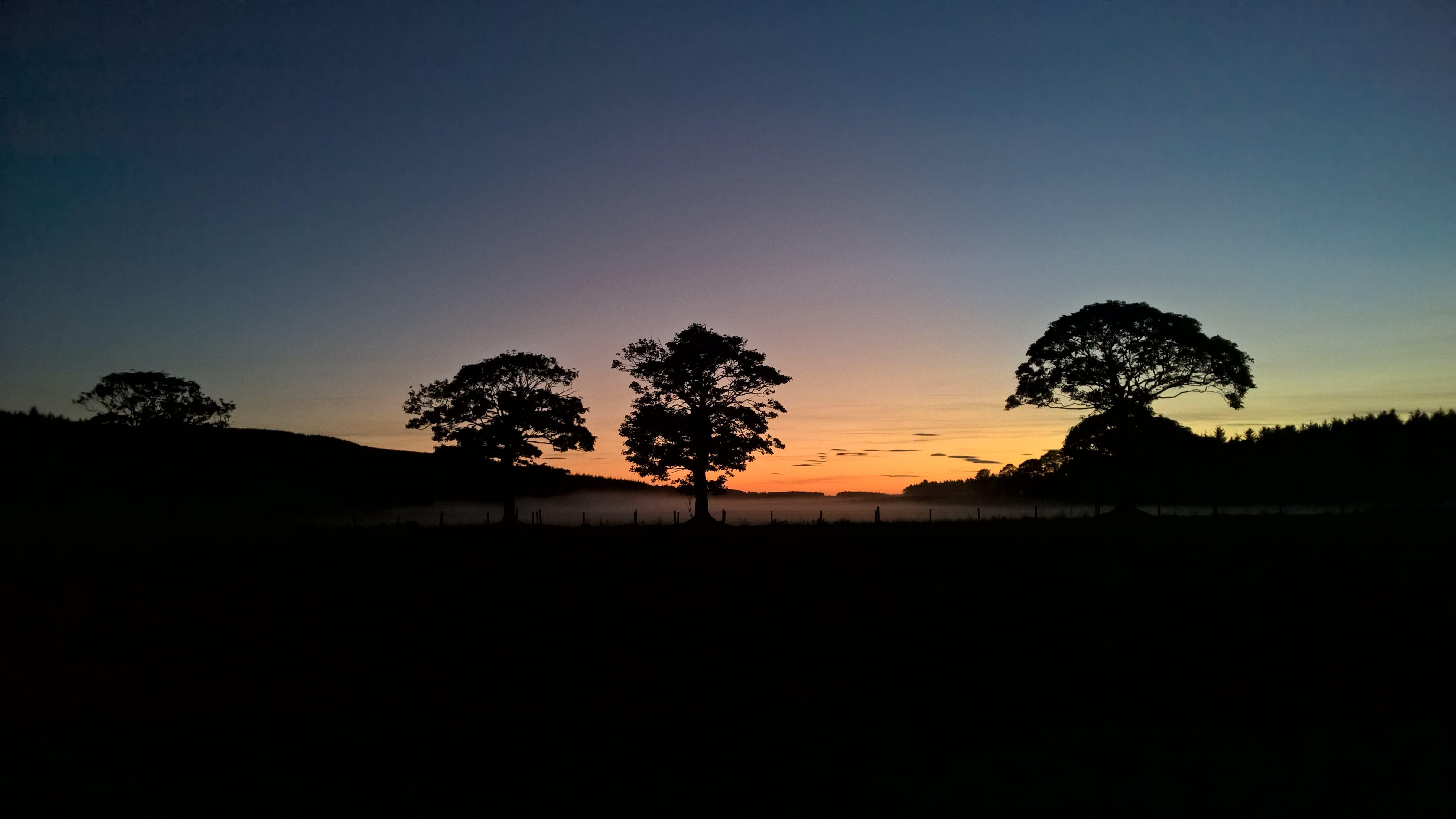 Free stock photo of Dark Sky, grass field, night, sunset
