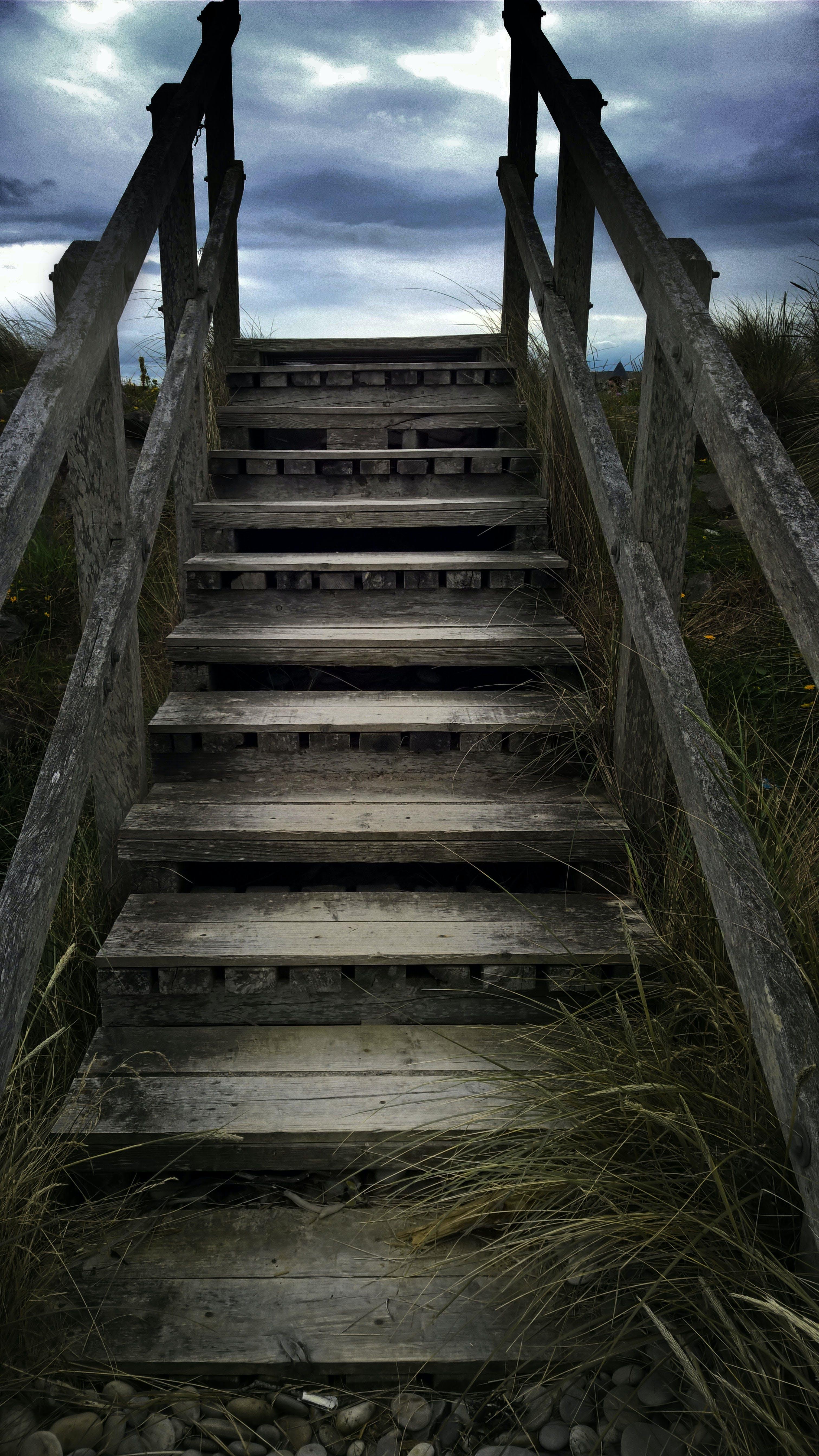 Free stock photo of beach, Dark Sky, grassy, hardwood