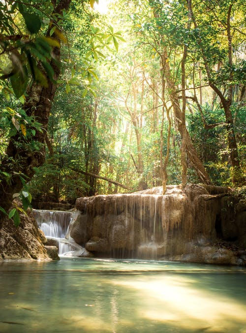Wonderful landscape of lush green tropical jungle with small waterfall flowing through rough rocks into calm pond on sunny day