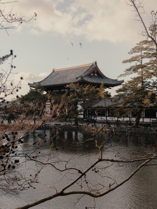 Základová fotografie zdarma na téma architektura, buddhismus, buddhista
