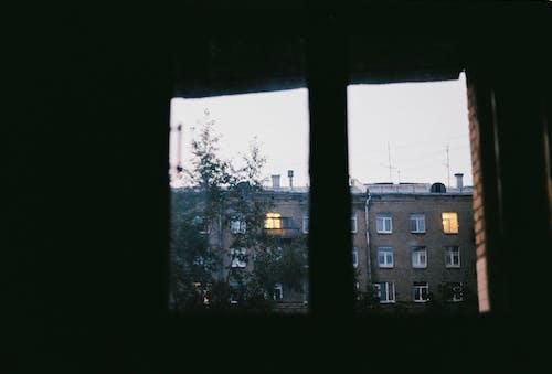 건물, 어두운, 창문의 무료 스톡 사진