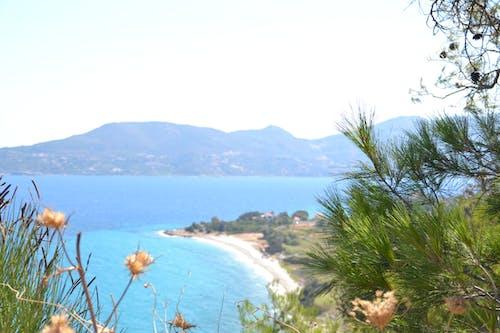 ギリシャ, サモス, 地中海, 海洋の無料の写真素材