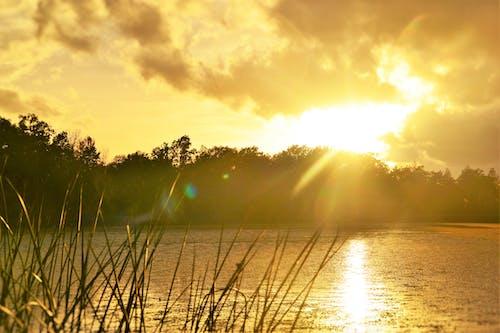 スウェーデン, 夕食会, 日没, 池の無料の写真素材