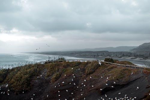 açık hava, bulutlu, deniz, deniz kıyısı içeren Ücretsiz stok fotoğraf
