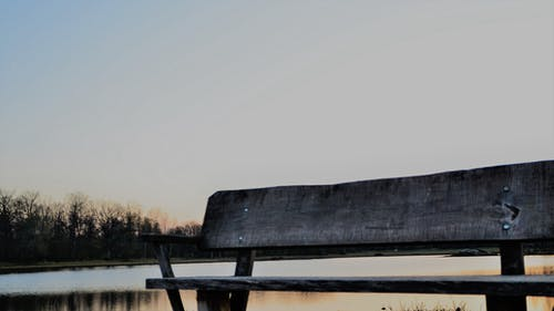 ツリーベンチ, ベンチ, 日没, 水の無料の写真素材