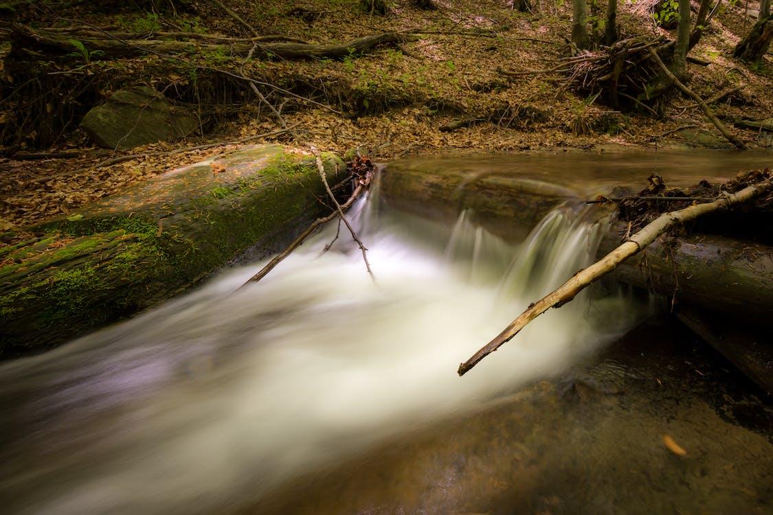 вода, водопад, движение
