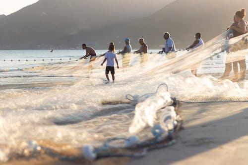 Základová fotografie zdarma na téma akce, brazílie, cestování