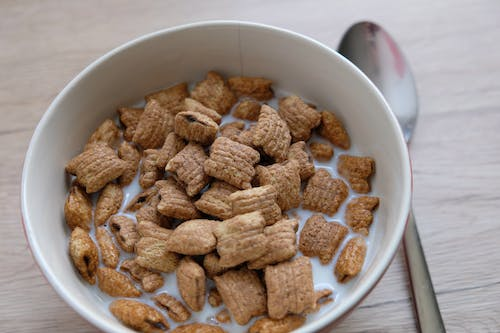 Free stock photo of breakfast, cereal, lion