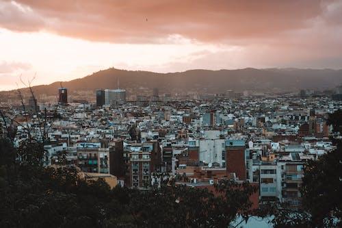 Fotobanka sbezplatnými fotkami na tému architektúra, Barcelona, budova, centrum mesta