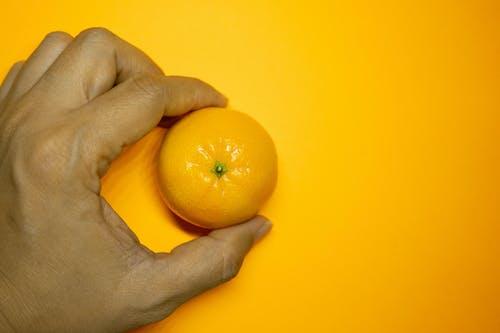 Free stock photo of golden yellow, kitchen, orange