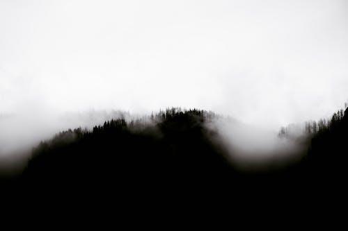 Безкоштовне стокове фото на тему «bw, атмосфера, безтурботний»