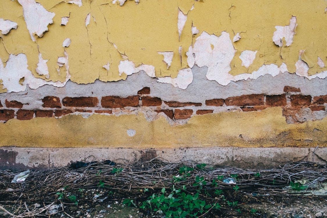 Free stock photo of brick texture, brick wall, texture