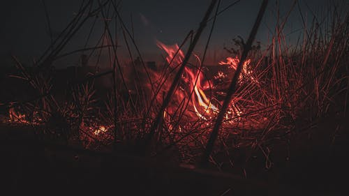 Silhouette of Grass Burning during Night Time