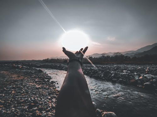 Person Hand Reaching for the Sun