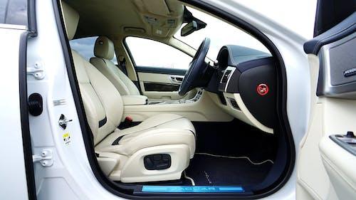 Black and White Car Interior