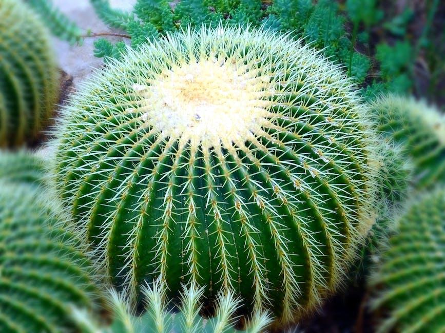 blur, botanical, cactus