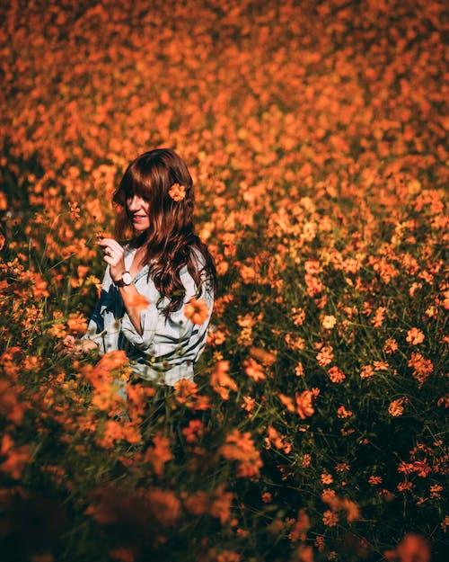 Gratis stockfoto met bloeiend, bloemachtig, bloemen