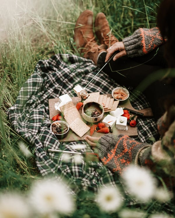 Person in Black and White Plaid Long Sleeve Shirt Having A Picnic