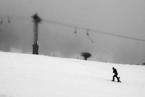 Immagine gratuita di bianco e nero, imbarco sulla neve, inverno