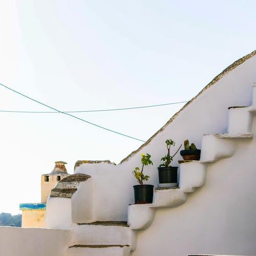 Immagine gratuita di bianco, foto dell'isola, grecia