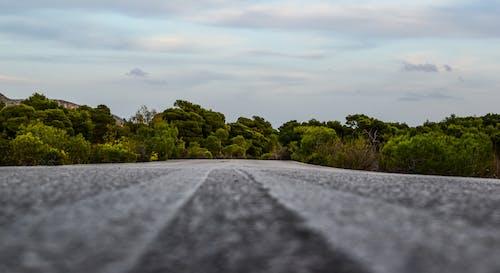 Immagine gratuita di strada, strada di campagna, strada vuota