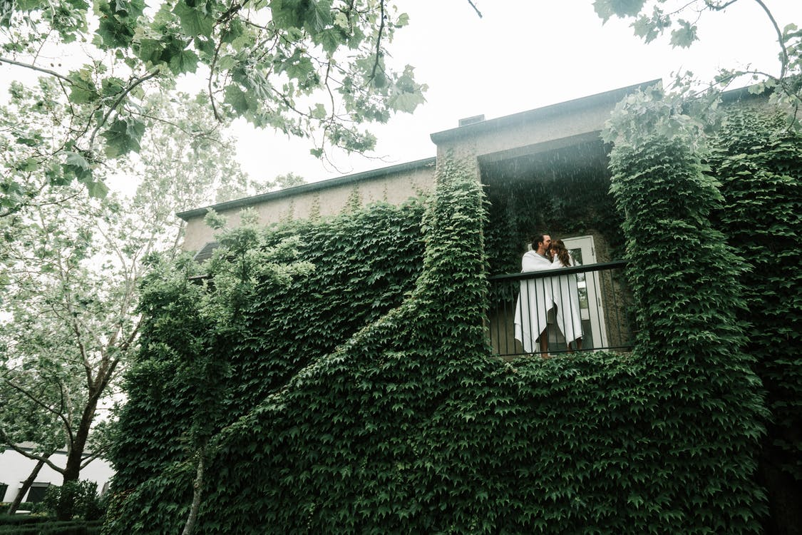 Couple Standing By The Doorway With Green Vine Plant on Wall