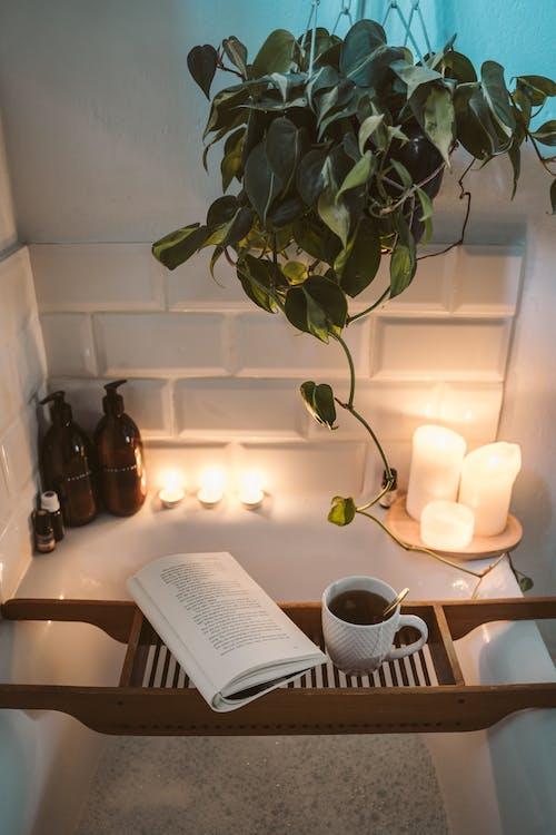 一杯茶, 休閒, 光, 光線 的 免費圖庫相片