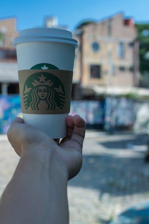 Gratis stockfoto met architect, koffie, ontwerper, starbucks