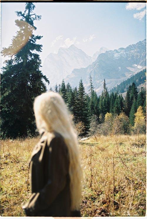 Woman Looking at a Tree