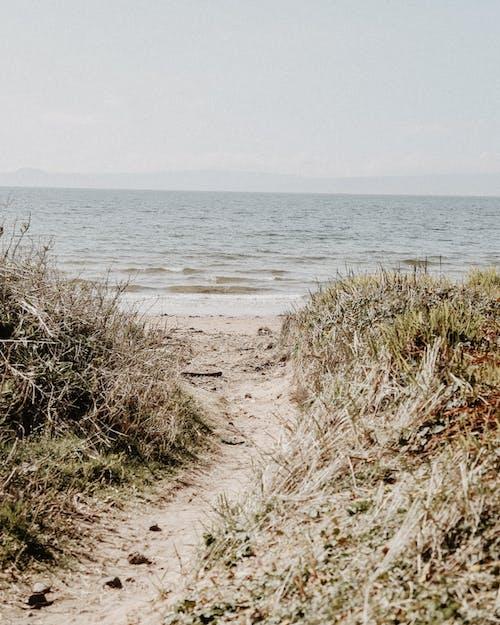 Free stock photo of beach, Blue ocean, scotland, walk path