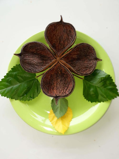 Symbol of good luck on green plate