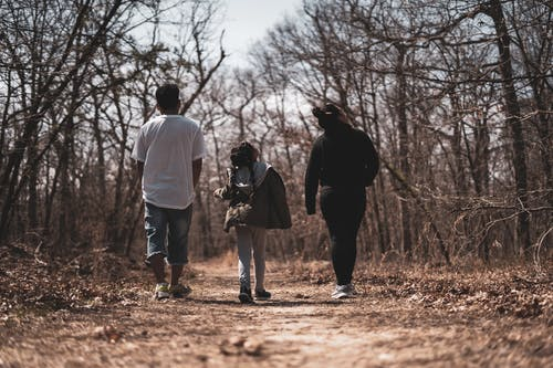 Unrecognizable parents with daughter walking on dry pathway between trees