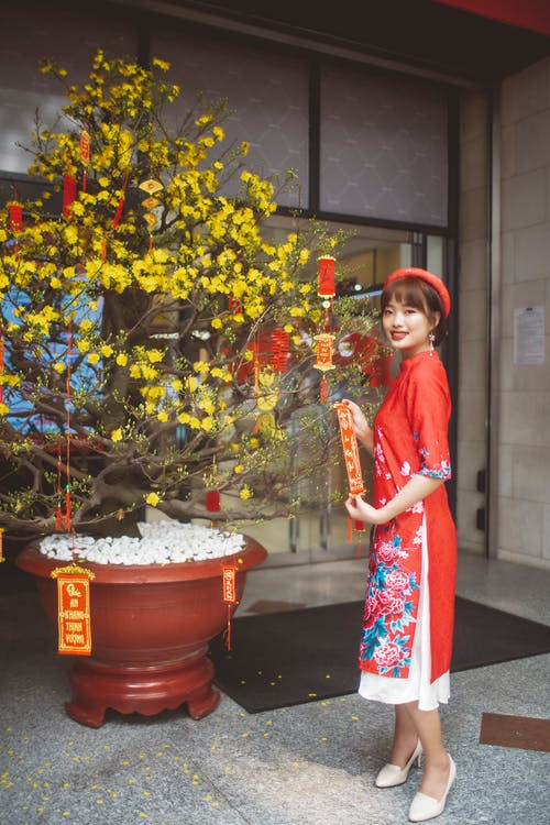Woman in Blue and Red Dress Standing Beside Red Flower Pot