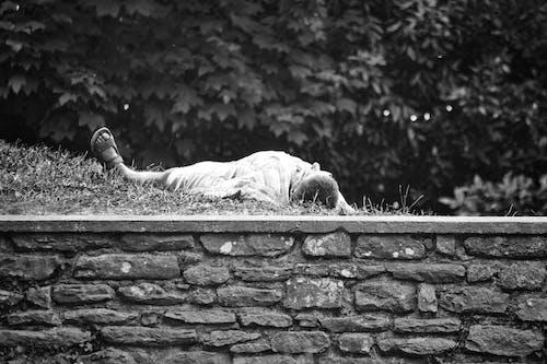Photos gratuites de dormir, homme, jardin public, noir et blanc