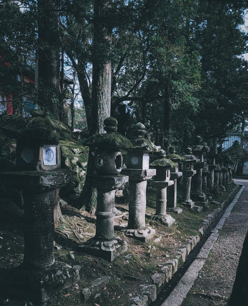 Free stock photo of japan, temple