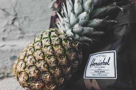 Free stock photo of pineapple, fruit, backpack, tropical