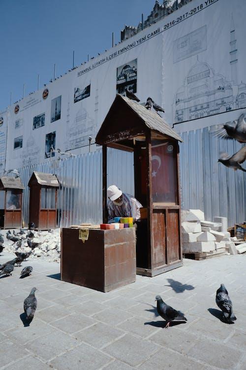 Senior man selling pigeon food in street market