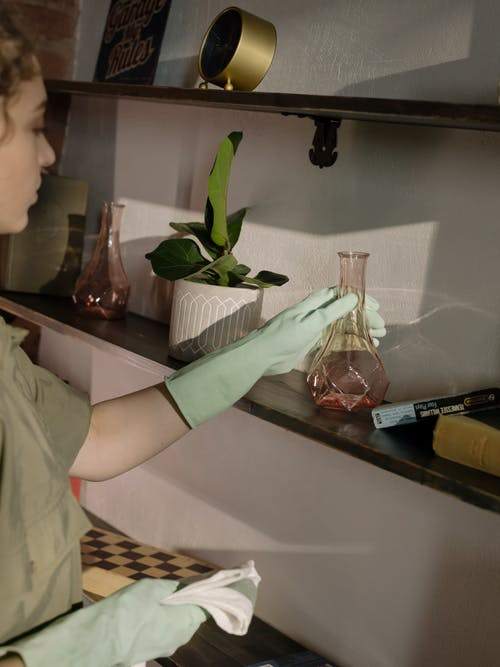 Person Holding Clear Glass Vase