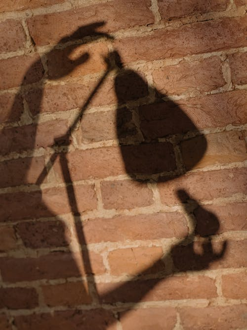Shadow of Person on Brown Brick Wall
