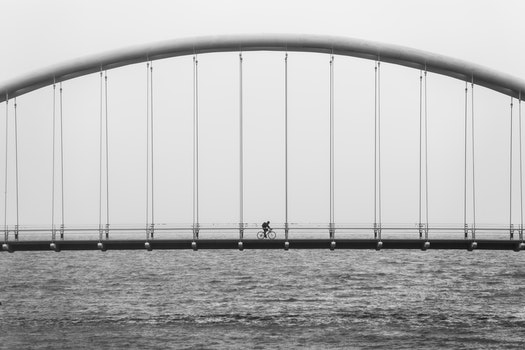 Free stock photo of sea, black-and-white, bridge, suspension bridge