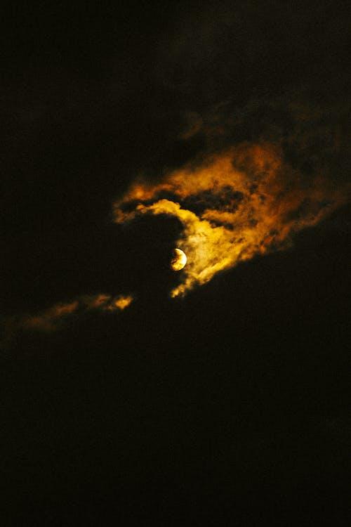 充滿活力, 光, 光線, 冷靜 的 免費圖庫相片