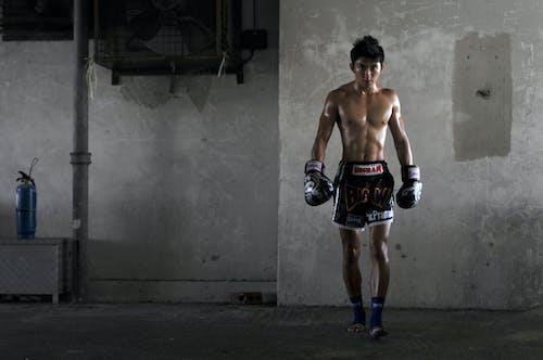 Imagine de stoc gratuită din atlet, bărbat asiatic, boxer