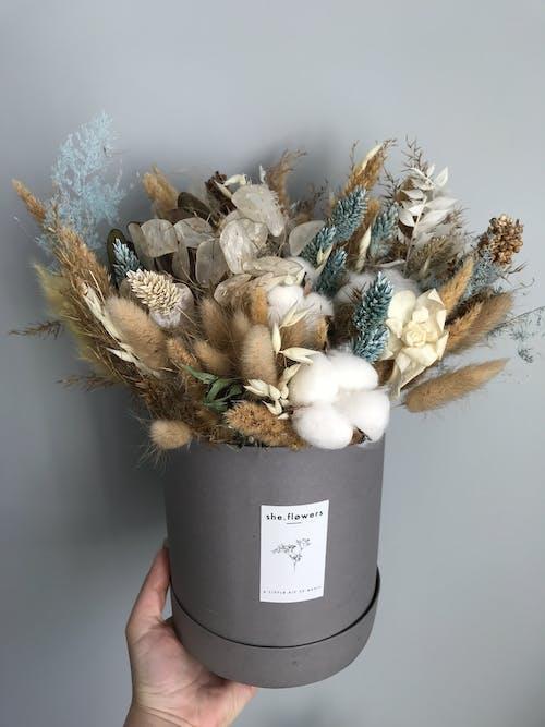 Immagine gratuita di assortito, bellissimo, bocciolo, bouquet di fiori
