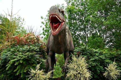 Gratis lagerfoto af dinosaurus, figur, have, idyllisk